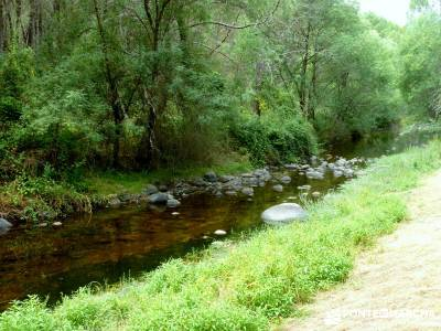 Paseo y Baño por el Valle y Río Tiétar;puente de pilar berrea monfrague viajes organizados a madr